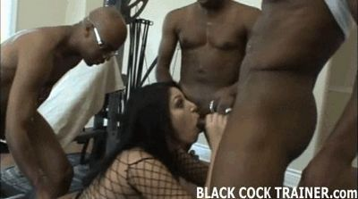 Black Cock Trainer free